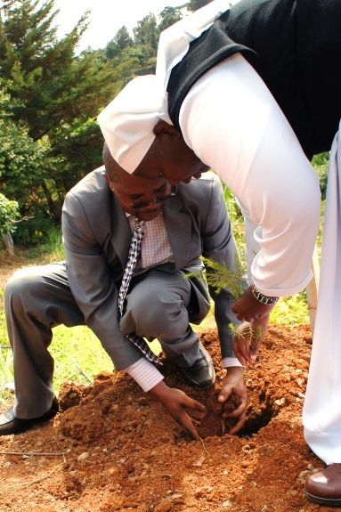 Sister Olang' (principal) planting a tree to commemorate the occasion
